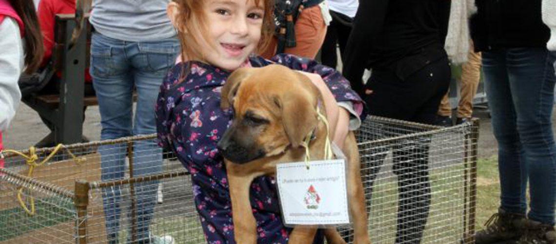 Educando Mi Perro en el encuentro de cachorros El Pais My Pets 2017 en Kibon, Montevideo